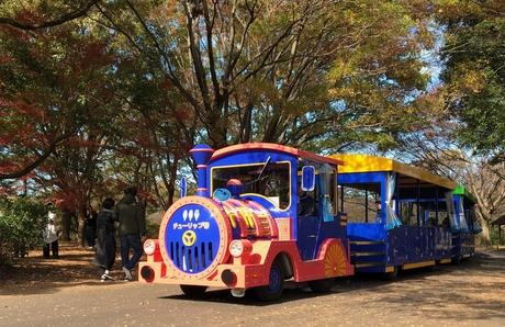 子供も大人もみんな笑顔に!昭和記念公園内を走るパークトレインの運営スタッフ大募集!!